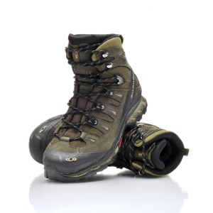 Salomon Quest 4D GTX Hiking Boot