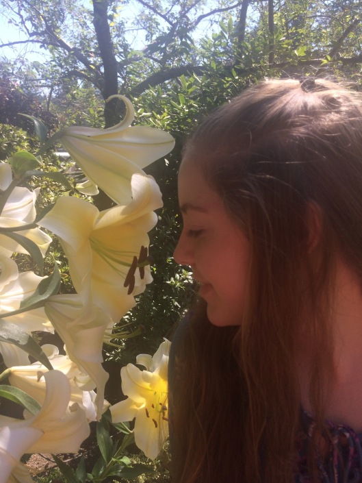 butchart flower ellie