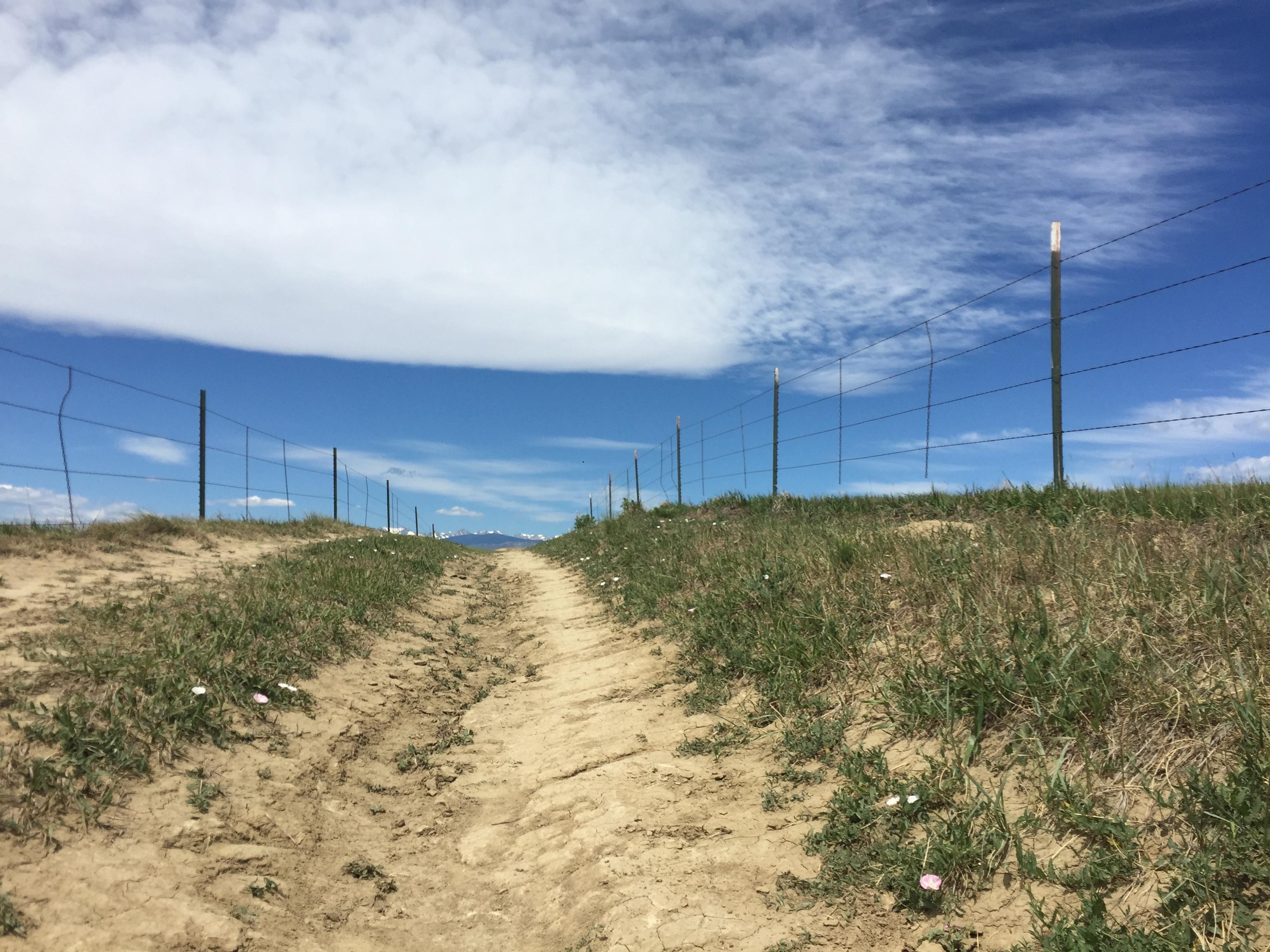 dirt trail 2